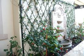 Ideas For Metal Garden Trellis Design Garden Trellis Metal Hydraz Club
