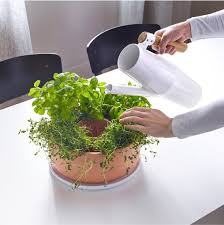 herbs planter a self watering herb planter that u0027s also a centerpiece kitchn
