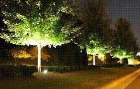 Landscape Lighting Trees Metrolina Landscape Low Voltage Lighting