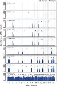 whole genome resequencing reveals extensive natural variation in