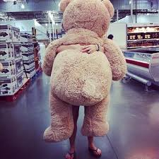 big teddy bears for valentines day every girl wants that teddy for s day just