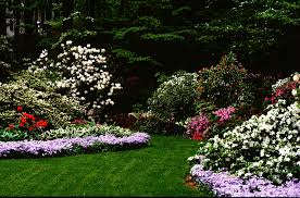 Backyard Flower Bed Ideas Backyard Flower Garden Layout Decorating Clear