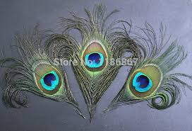 feathers for hair 50pcs lot 12 15cm curly peacock eye feathers for hair