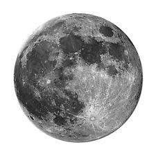 moon rug ebay