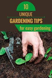 10 unique gardening tips for easy gardening zoomzee org