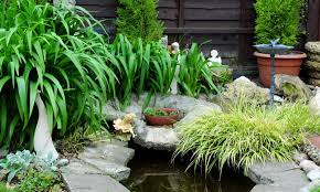 Garden Pond Ideas 37 Backyard Pond Ideas Designs Pictures