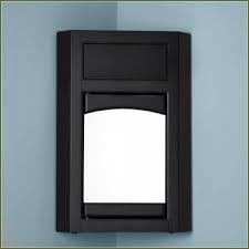 oak medicine cabinet without mirror ideas u2013 home furniture ideas