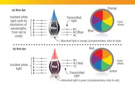 what color does blue and yellow make 10079