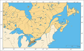Map Of Eastern Canada by Pachybrachis Coleoptera Chrysomelidae Cryptocephalinae Of