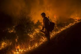 Wildfire Cali by White House Moves Funds In Anticipation Of Drought Fueled Wildfire