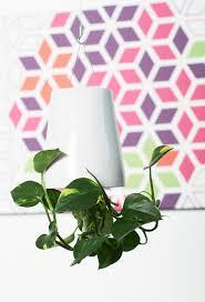 ambius u0027sky planter u0027 indoor plant container bookmarc online