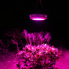 welcome to the place with the best led grow lights for sale