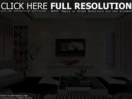 elegant livingroom living living room deluxe modern living room decorations ideas