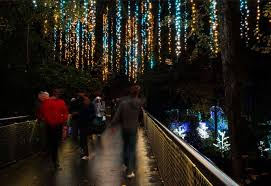 atlanta botanical garden lights atlanta botanical garden celebrates holidays with thousands of lights