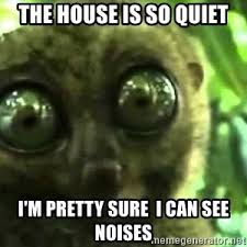 I Can See Sounds Meme - the house is so quiet i m pretty sure i can see noises and now i