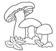 92 mantar resimleri images draw mushrooms
