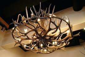 Home Interiors Deer Picture Chandeliers Chic Deer Antler Chandelier About Home Interior