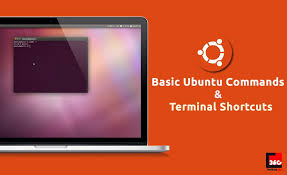 www google commed ubuntu commands and terminal shortcuts every beginner must know