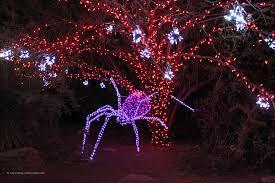 zoolights holiday display at the phoenix zoo