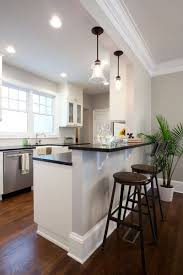 European Kitchens Designs Kitchen Design Kitchen Remodel European Kitchen Kitchens By