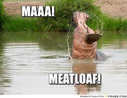 Hippo Memes - day o2 hippo memes polyvore