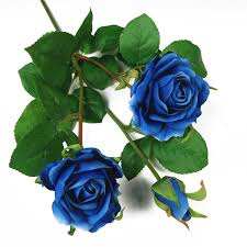 blue roses for sale buy cheap china flowers dried products find china