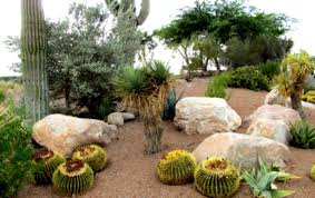 Small Backyard Ideas Landscaping by Small Backyard Ideas A Round Rock Garden Desert Landscaping Corner