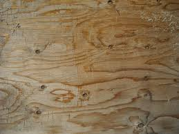 Wood Texture by Free Picture Light Wood Texture