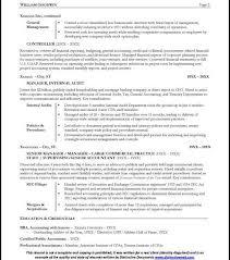 Sample Resume Cfo by Download Cfo Resume Haadyaooverbayresort Com