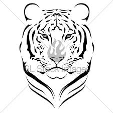 10 best images on tiger design