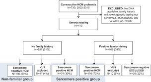 nonfamilial hypertrophic cardiomyopathyclinical perspective