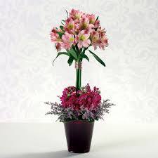 Ny Topiary - timeless topiary hastings on hudson ny village balloon u0026 flower