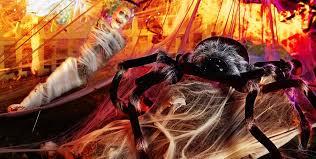 Halloween Decorations Store Toronto by Halloween Spiders Giant Spiders Spider Webs U0026 Spider