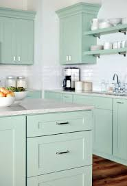 Martha Stewart Kitchen Cabinets Home Depot Modern Cabinets - Kitchen cabinets at home depot