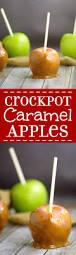 crockpot caramel apples the gracious wife