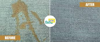 How To Get Dry Stains Out Of Carpet How To Remove A Coffee Stain From Carpet 3 Easy Methods Fab How