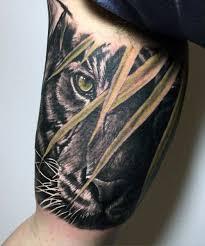 bicep tiger tattoos on tattoos tiger
