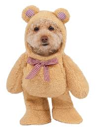 Halloween Costumes Yorkies Amazon Walking Teddy Bear Pet Suit Large Pet Supplies
