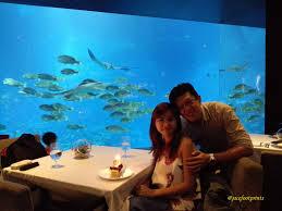 singapore ocean restaurant ocean view u0026 exquisite dining