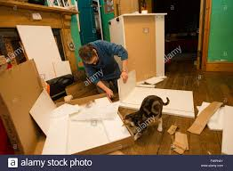a middle aged woman with her cat assembling a set of flat pack