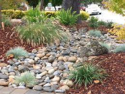 low water garden design garden design ideas