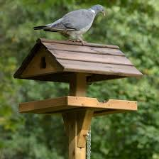 Bird Table L Adjustable Bird Table Rspb Shop