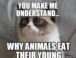 Eat Meme - animals eating their young memes eating best of the funny meme