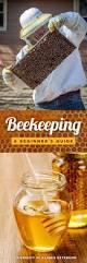 Raising Bees In Backyard by Best 25 Raising Bees Ideas On Pinterest Beekeeping Bee Keeping