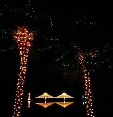 plantation baptist church christmas lights 30 best lowcountry christmas ideas images on pinterest christmas