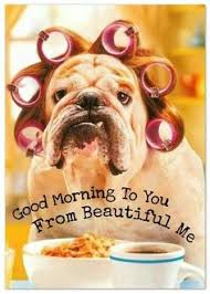 Good Morning Sunshine Meme - good morning sunshine meme pictures funny cute silly good