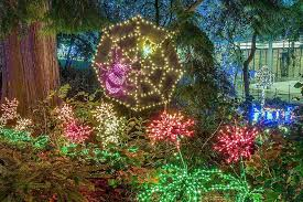 Botanical Gardens Seattle At Bellevue Botanical Garden A Half Million Lights Delight