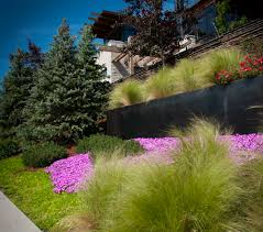 landscaping denver co big alpine u2014 marpa landscape architecture and construction