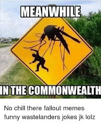 Funny Fallout Memes - meanwhile in the commonwealth no chill there fallout memes funny
