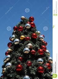 tree glinting sky stock photo